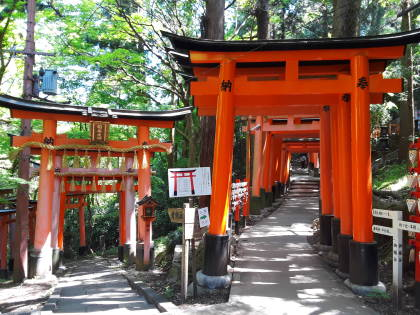 Inari Taisha shrine in Kyōto.