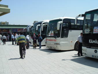 Buses lined up at a Turkish bus station.